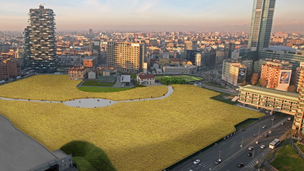 Un Campo di Grano a Milano